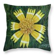 Huisache Daisy Throw Pillow
