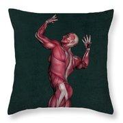 Human Anatomy 16 Throw Pillow