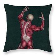 Human Anatomy 20 Throw Pillow