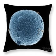 Human Egg Cell And Sperm Cells Esem Throw Pillow