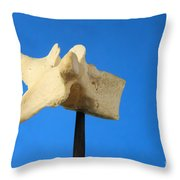 Human Vertebra Throw Pillow