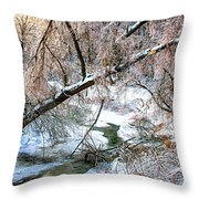 Humber River Winter 3 Throw Pillow