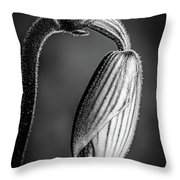 Humble Monochrome Throw Pillow