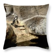 Humboldt Penguin 1 Throw Pillow
