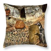Humboldt Penguin 4 Throw Pillow