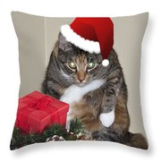 Humbug Throw Pillow by Cathy Kovarik
