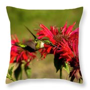 Hummer In The Bee Balm Throw Pillow