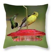 Hummer Vs. Finch 2 Throw Pillow