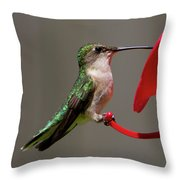 Humming Bird 8 Throw Pillow