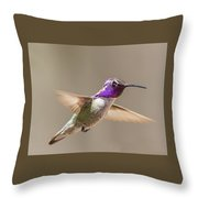 Humming Bird Freeze Frame Throw Pillow