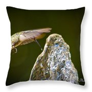 Humming Bird Hovering Over Water Fountain Getting A Drink Throw Pillow