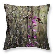 Humming Bird In Nature Throw Pillow