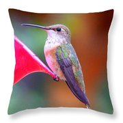Hummingbird - 18 Throw Pillow