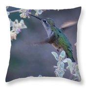 Hummingbird 0091 Throw Pillow