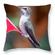 Hummingbird 1 Throw Pillow