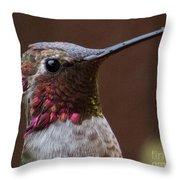 Hummingbird 16 Throw Pillow