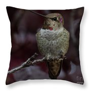 Hummingbird 17 Throw Pillow