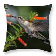 Hummingbird #2 Throw Pillow
