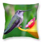 Hummingbird 32 Throw Pillow