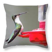 Hummingbird 33 Throw Pillow