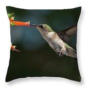 Hummingbird #4 Throw Pillow