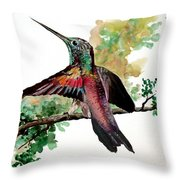 Hummingbird 5 Throw Pillow