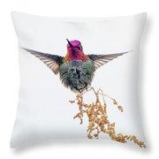 Hummingbird 7445-021418-1cr Throw Pillow