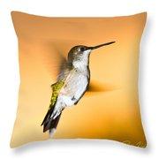 Hummingbird Agains The Sunset Throw Pillow