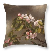 Hummingbird And Apple Blossoms Throw Pillow