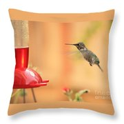 Hummingbird And Feeder Throw Pillow