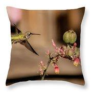 Hummingbird And Red Yucca Throw Pillow
