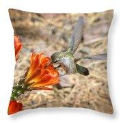 Hummingbird And The Hedgehog  Throw Pillow