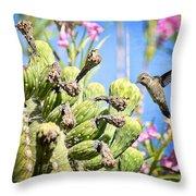 Hummingbird And The Saguaro  Throw Pillow