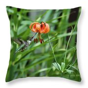 Hummingbird And Tiger Lilly Throw Pillow