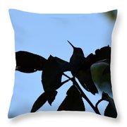 Hummingbird At Sunrise Silhouette Throw Pillow