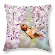 Hummingbird At Wisteria Throw Pillow