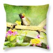 Hummingbird Attitude - Digital Paint 1 Throw Pillow