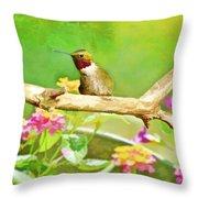 Hummingbird Attitude - Digital Paint 2 Throw Pillow
