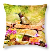 Hummingbird Attitude - Digital Paint 4 Throw Pillow