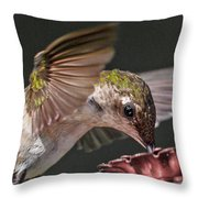 Hummingbird. Throw Pillow