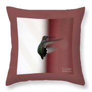 Hummingbird Changing Course Throw Pillow
