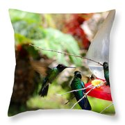 Hummingbird Close Encounter Throw Pillow