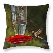 Hummingbird Coming For Dinner Throw Pillow