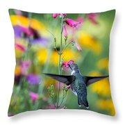 Hummingbird Dance Throw Pillow by Dana Moyer