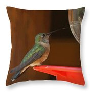 Hummingbird De Throw Pillow