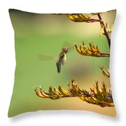Hummingbird Drinking Nectar Throw Pillow