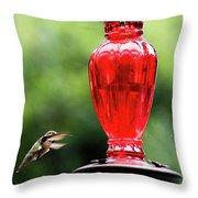 Hummingbird Feeder Throw Pillow