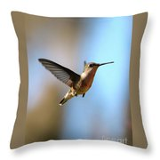 Hummingbird Friend Throw Pillow