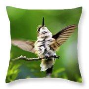 Hummingbird Happy Dance Throw Pillow