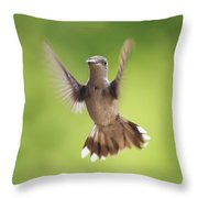 Hummingbird Hello There Throw Pillow